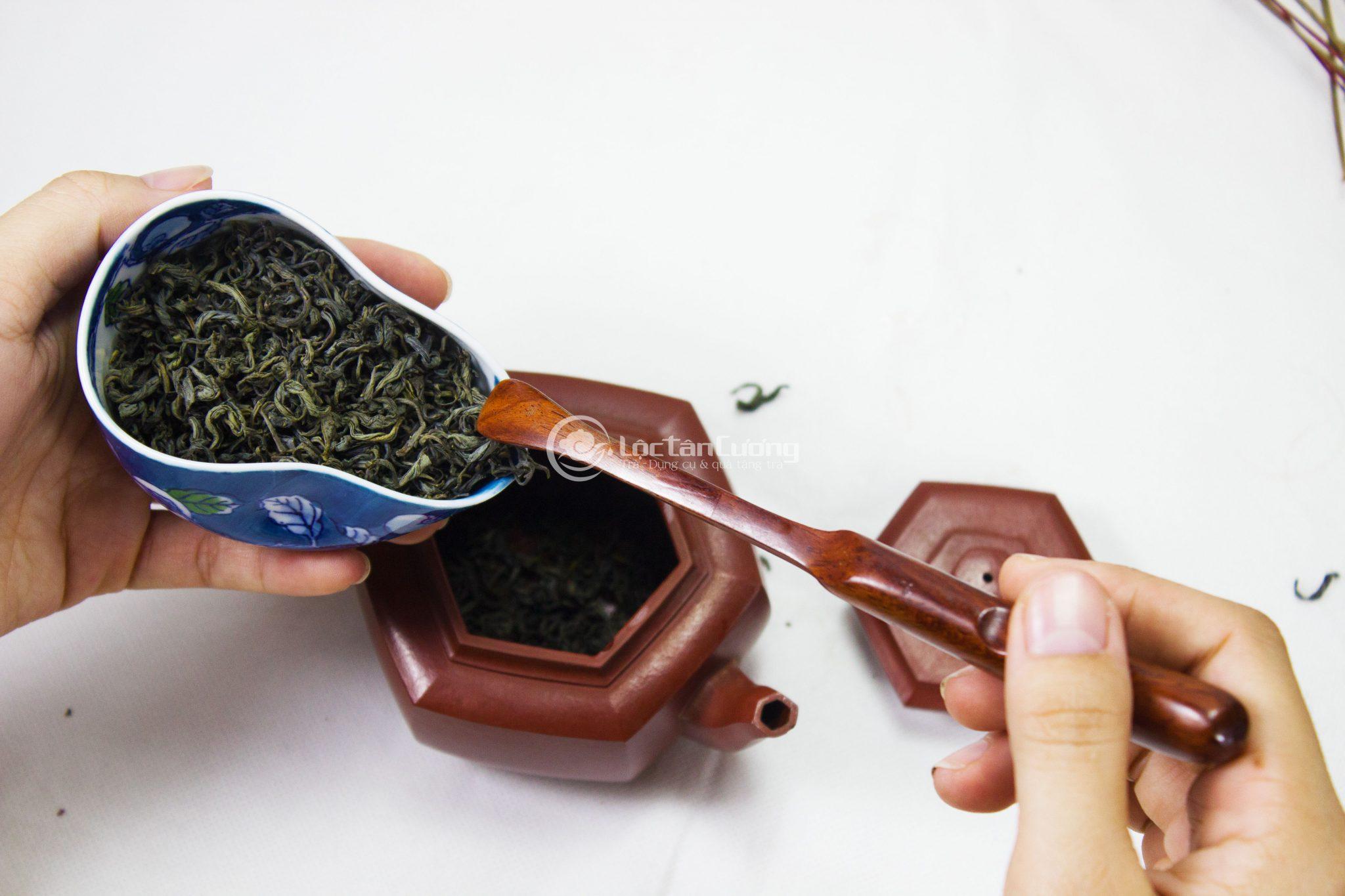 Hướng dẫn pha trà búp tân cương thái nguyên ngon đúng chuẩn người sành trà