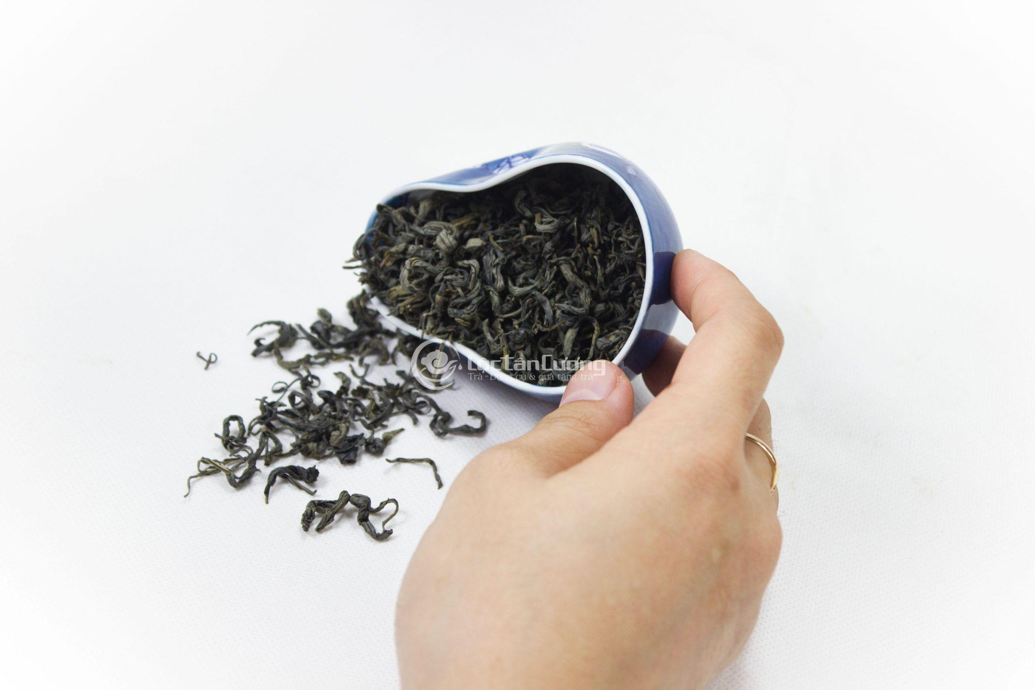 Cánh trà búp lộc xuân to, xoăn chắc và đều
