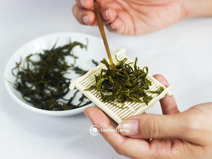 Cánh trà móc câu đặc biệt Lộc Tân Cương sau khi pha