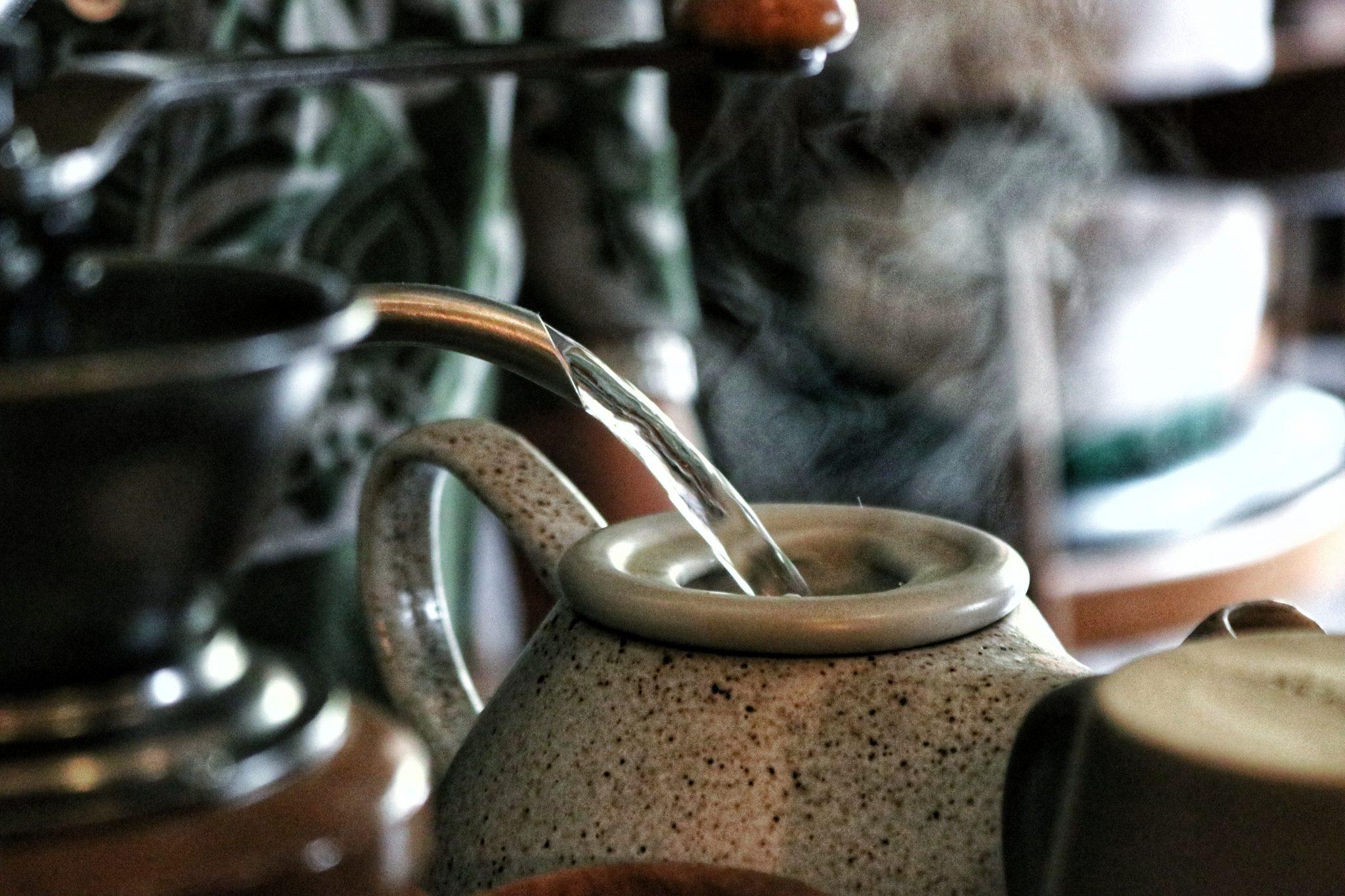 Thường thức trà ướp hoa sói vì hương vị và những tác dụng có lợi đối với sức khỏe