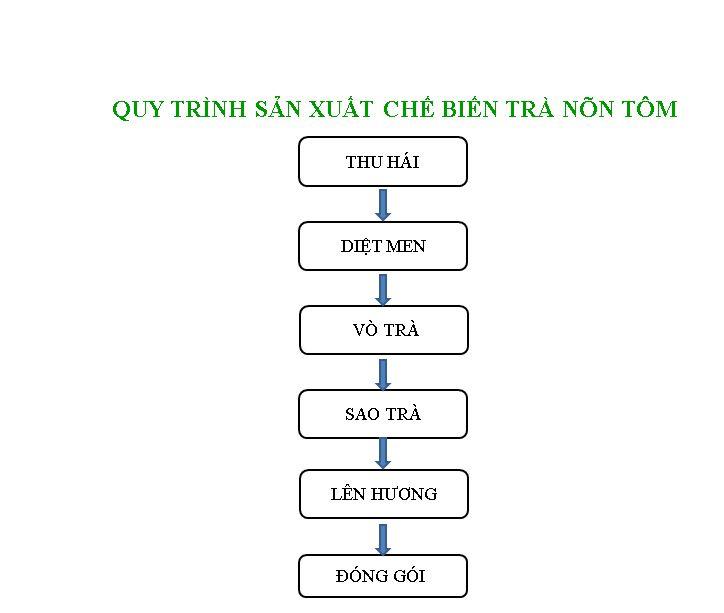 Quy trình chế biến và sản xuất trà nõn tôm bằng dây chuyền thủ công