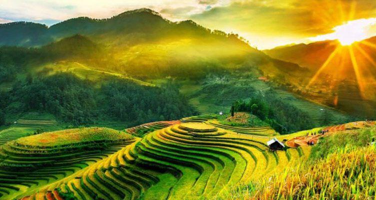 Những đồi chè dưới chân núi được hưởng trọn ánh nắng bình minh
