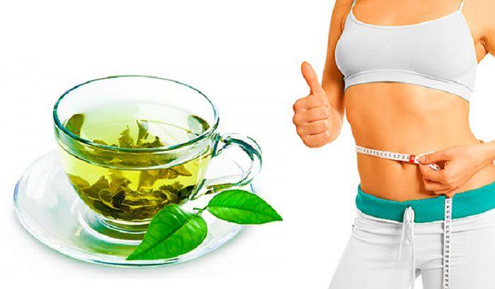 Trong búp chè có chứa Cafein và chất Tanin có tác dụng rất tốt với việc đào thải chất mỡ và các độc tố vì vậy uống chè bắc giảm cân rất hiệu quả