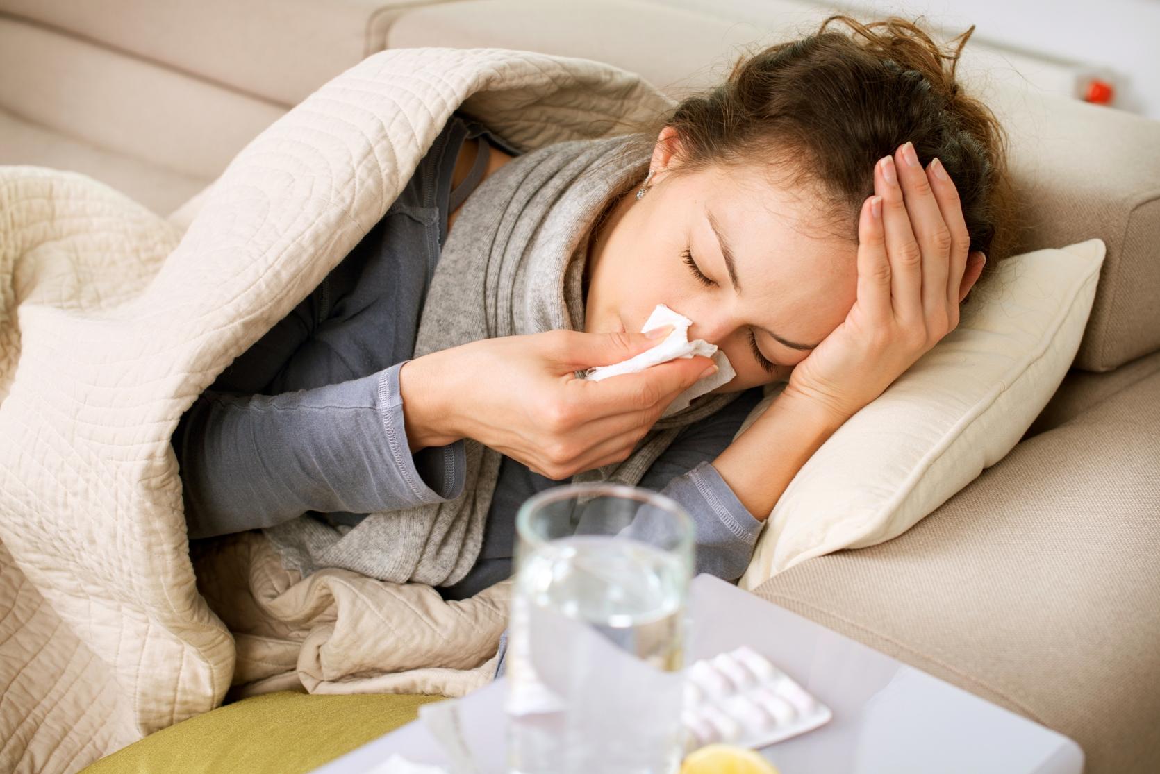 Trà cúc có khả năng kháng khuẩn cũng như tính mát nên rất hiệu quả trong việc giải cảm.