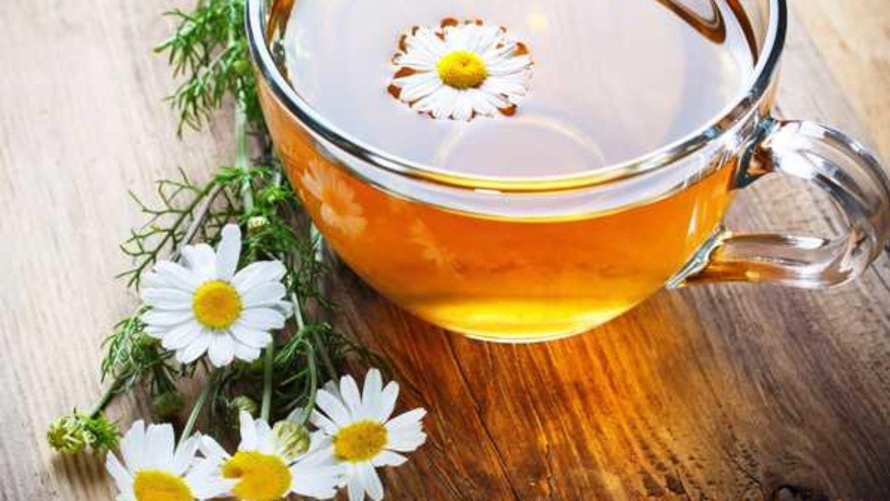 """Hương thơm dịu nhẹ cùng vị ngọt thanh của trà hoa cúc mật ong sẽ là một loại """"thần dược"""" giúp bạn thanh nhiệt cơ thể và thư giãn sau những căng thẳng, mệt mỏi."""