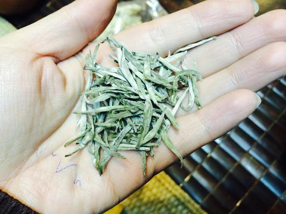 trà shan tuyết Tây Côn Lĩnh