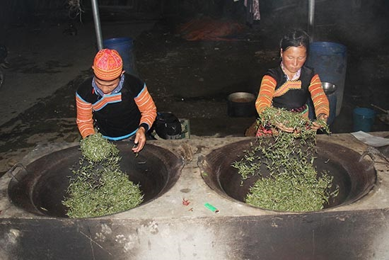 Trà được mang về SAO CHẢO bằng tay truyền thống, trà sao bằng máy thì 1h là xong 1 mẻ trà, nhưng sao chảo như thế này thì 3h mới xong 1 mẻ trà, tuy lâu và sản lượng ít nhưng hương vị của trà thơm thơm ngon, đặc biệt.