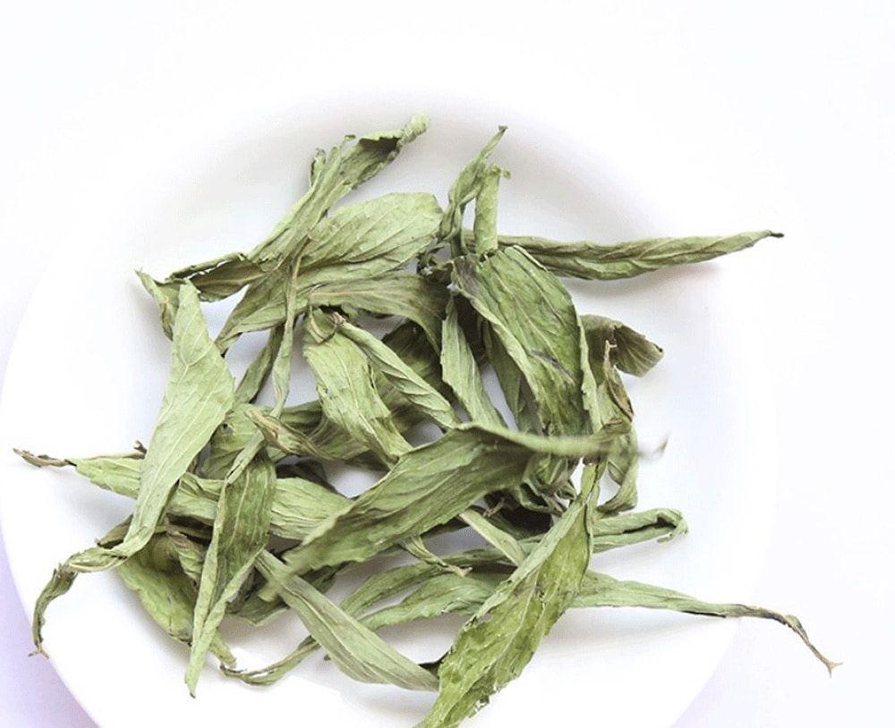 Trà cỏ ngọt rất tốt cho người bệnh tiểu đường