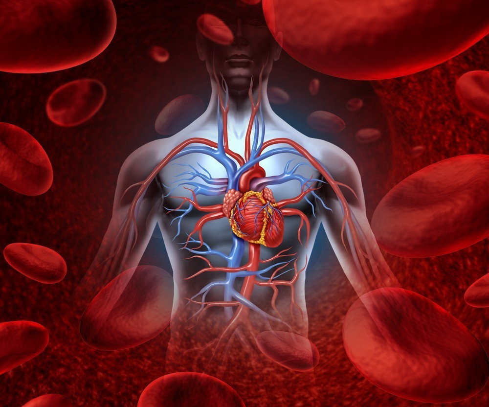 Trà hoa đậu biếc trị bệnh tim mạch rất hiệu quả