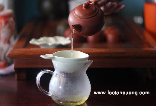 Lọc trà lá xanh
