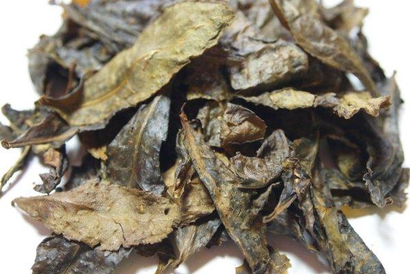 Trà bancha được làm từ lá trà già trên cây trà shan tuyết cổ thụ lâu năm