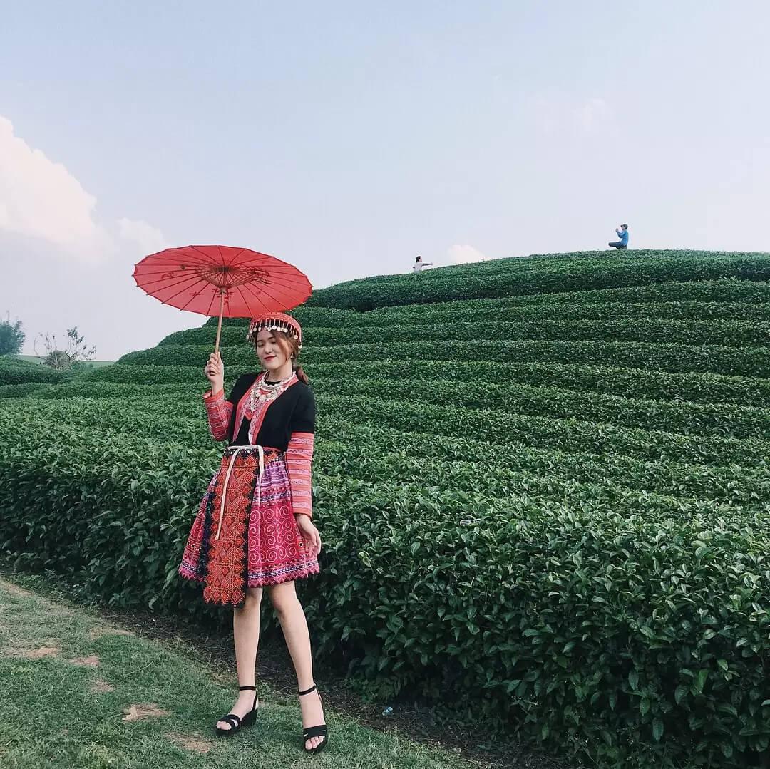 Một bức ảnh chụp ảnh tại đồi chè Tân Cương