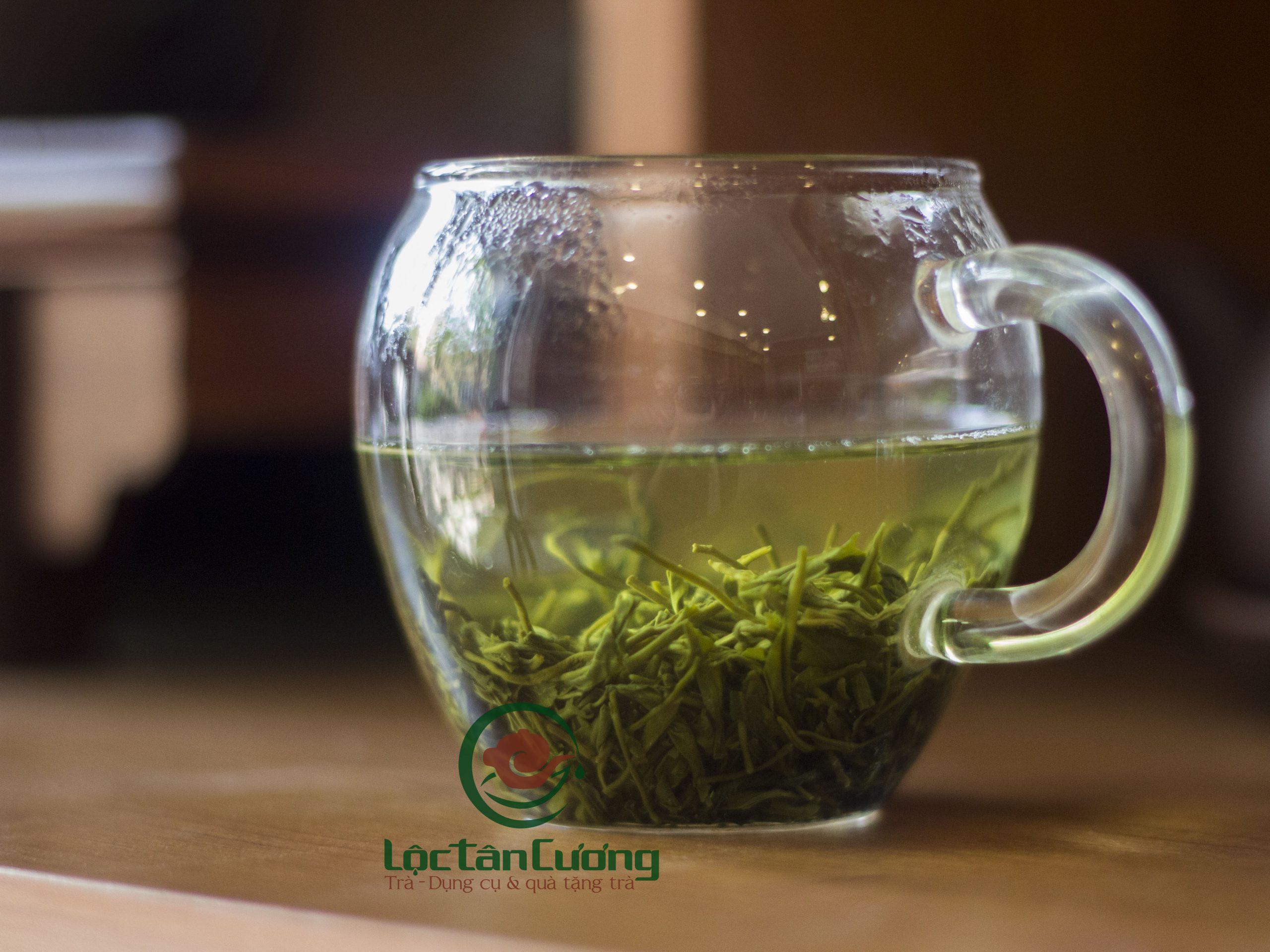 uống trà bắc có giảm cân không